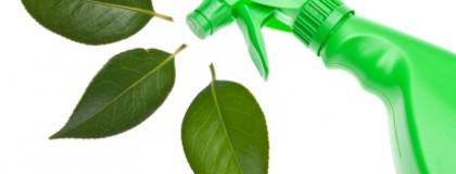 Choose Organic For A 'Safer, Greener Cleaner'